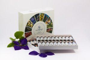 Bach bloesem therapie is een natuurlijke geneeswijze, die de gemoedstoestand ondersteunt met behulp van bachbloesems