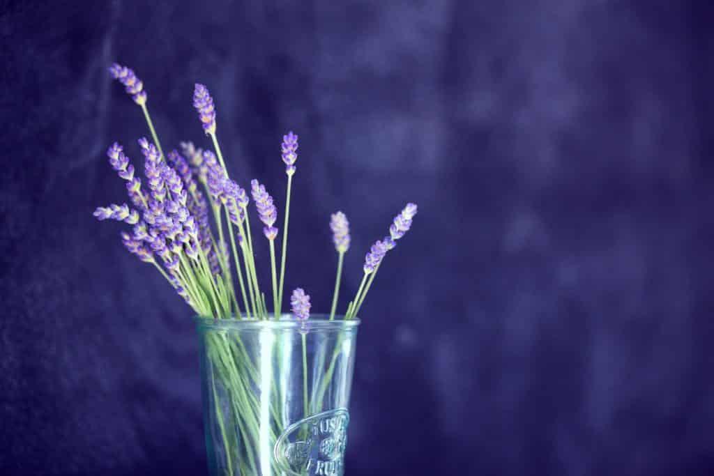 Rustgevende lavendel thee