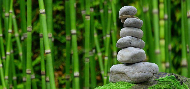 Rustgevende kruiden voor ontspanning en evenwicht