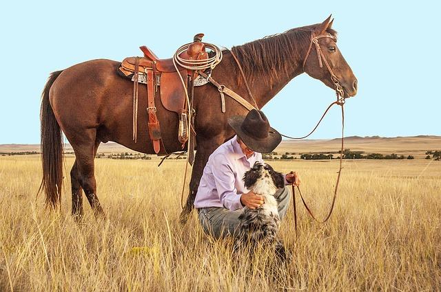 Bach bloesem paard