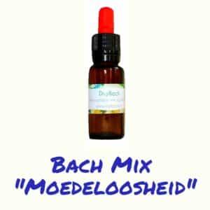 Bach remedie bij moedeloosheid van digibach