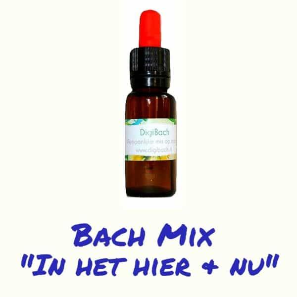 Bach remedie in het hier en nu blijven