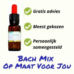 Persoonlijk samengestelde Bach remedie