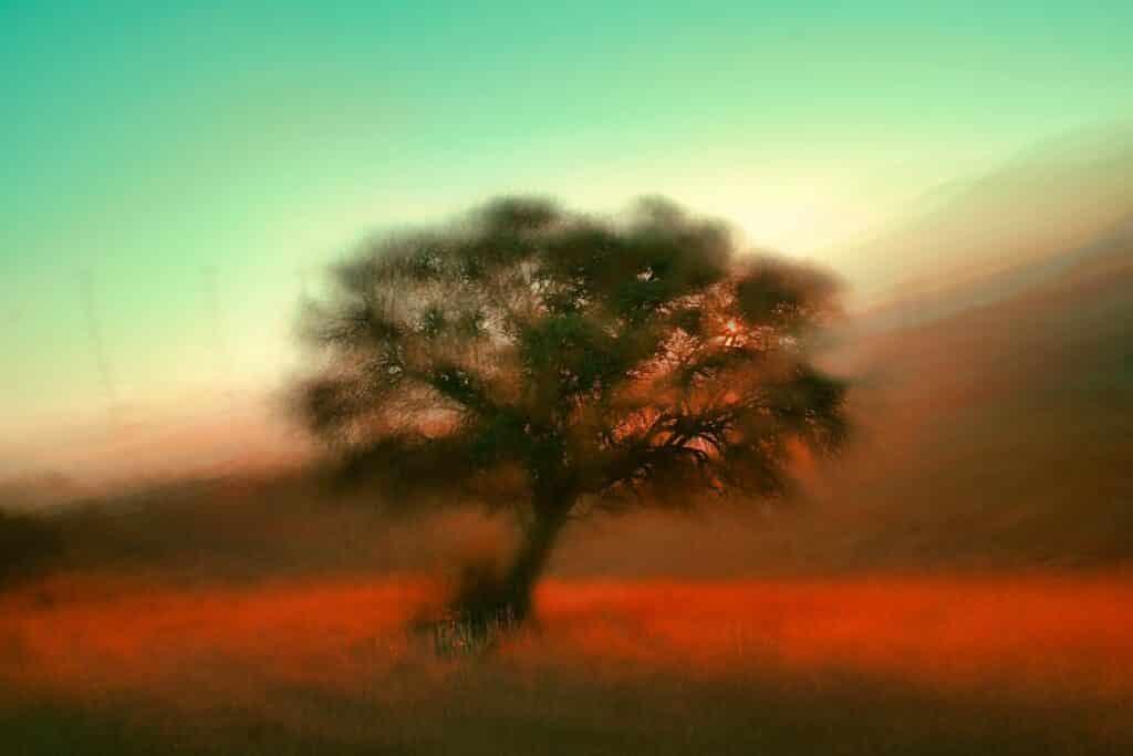 Tijdens een droom worden je hersenen niet beperkt door hoe de wereld er uit hoort te zien, en kun je creatiever en vrije interpreteren